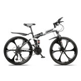 Expert Manufacturer of Folding Mountain Bicycles Adults Road Bike