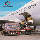 Express Shipping Service to Uzbekistan DDP Cheap Air /Sea Freight Rates China Freight Agent Low Insurance Rates Real Situation