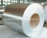 0.16-3.0mm Galvanized Steel Coil (GI)