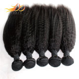 Top Quality Kinky Straight Peruvian Virgin Human Hair Weave
