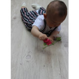 New Color 12.3 mm Laminate Wood Flooring for Household