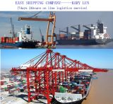Consolidate Reliable & Professional Shipping Service From China to USA