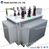 Distribution and Power Transformer with Dry-Type & Oil-Immersed Type 10~35kv