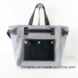 New Fashion Brand Women Canvas PU Shopping Handbags (NMDK-052705)