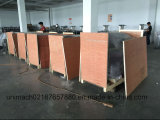 Small Blister Packing Machine for Pharmaceutical, Cosmetic, Food