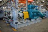 China Centrifugal Horizontal Pump Submersible Pump for Water/Oil/Industrial Medium