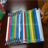 China Supply PE Tarpaulin Cover in Different Sizes