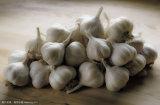 2018 Fresh Garlic- New Arrival, Hot Sales