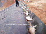 HDPE Geomembrane for Agricultural Water Storage