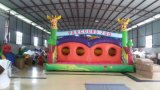 Inflatable Toy of Ultimate Playground (FC-0045)