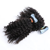 Grade 9A 10A Wholesale Price Raw Indian Cuticle Aligned Hair Virgin Human Hair Bundles with Closure