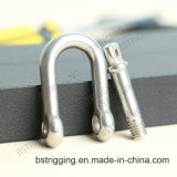 Stainless Steel Shackles for Rigging Hardware