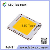 500W High Brightness LED COB Chip for LED Street Light