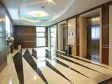 Asia FUJI Good Decoration Lower Price Home Residential Passenger Elevator Lift