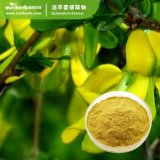 Factory Wholesale Herb Epimedium Extract Powder Enhance Male Sexual Function
