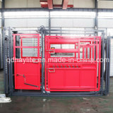 Professional Cattle Squeeze Chute Crush with Weighing Scale