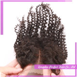 Nice Quality Human Hair Lace Closure Hair (4*4)