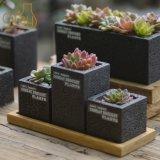 Wholesale Mini Concrete Flower Pot Garden Cement Pots for Plants