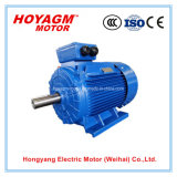 Ce Approved Yd Series Electric Motor Price