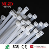 Natural White Color Nylon Cable Ties Nylon 66 Plastic Zip Ties