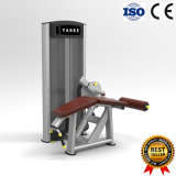 Exercise Machine Prone Leg Curl Gym Fitness Equipment