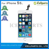 Wholesale Price High Quality Mobile Phone LCD Screen for iPhone 5s, AAA