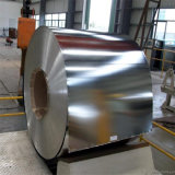 Building Material Hot DIP Steel Product Galvanized Steel Coil