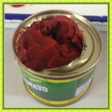 Buy Canned Fruit Tomato Paste