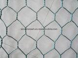 Galvanized Hexagonal Wire Netting with Competitive Price