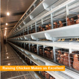 Good Price Automatic Poultry Farm Equipment Layer Laying Hens Chicken Battery Cage for Sale
