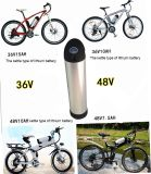 Rechargeable Lithium Ion LiFePO4 Electric Bike Battery Pack 36V ~ 72V