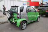 Green Energy Pure Electric Car with 2 Seats