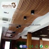 Top Favorite Designer Ceiling Custom Curve Ceiling From Factory