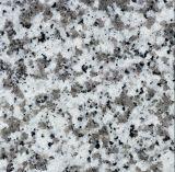G439 Big White Flower Natural Polished Granite Stone