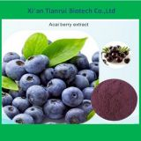 Manufacturer Supply Acai Berry Extract Powder