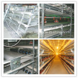 Broiler and Layer Cages for Poultry Farm