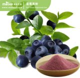 100% Natural Blueberry Fruit Powder