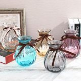 Free Sample Glass Bottle Colorful Glass Vase for Home Decoration