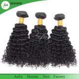 Young Woman Hot Sale Kinky Curly Chinese Human Virgin Hair Weft