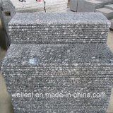 G418 Wave White Granite Step with Bullnose Edge