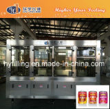 Fruit Juice Can Filling Equipment