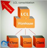 Professional LCL Consolidation Shipping Service From Qingdao to Worldwide