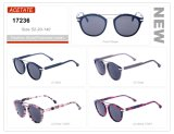 Fashion Design Wholesale Ready Stock Acetate Small Order Frame Sunglasses