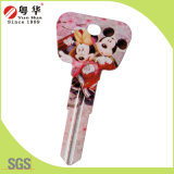 Selling Low Price Quality Custom Safety Colorful Key Blank