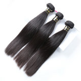 Alimina Hair Blond Remy Human Clip in Hair Extensions