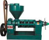 Small Seed Oil Processing Machine 3.5tons/Day (YZYX10(95))