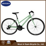 Good Price New Product Fitness Bicycle (FX7.1)