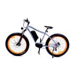 36V 10.4ah Li-ion Battery City Electric Bike
