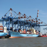 20′ Shipping Container From Qingdao to La Port