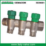 CE Cerfitied Brass Forged Manifold Fittings (AV9063)